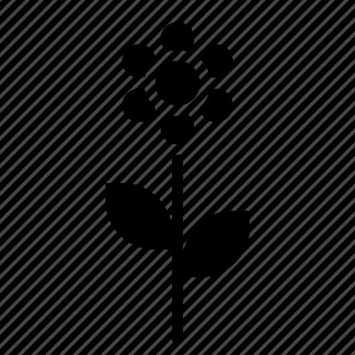 flower, plant, spring icon