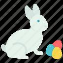 bunny, egg, paschal, rabbit icon