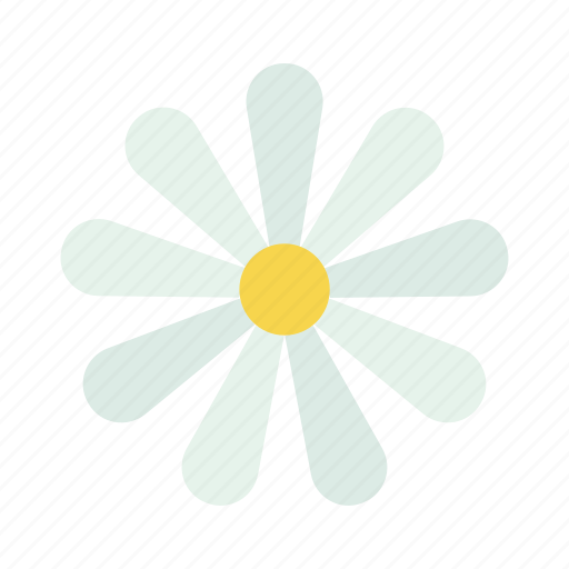 Chamomile, easter, flower, spring icon - Download on Iconfinder