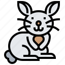 animal, bunny, easter, pet, rabbit