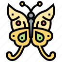 animal, butterfly, insect, natural, wing icon