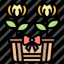 easter, flora, floral, flower, tulip
