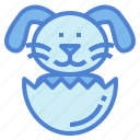 bunny, easter, mammal, pet, rabbit