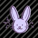 bunny, celebration, easter, rabbit
