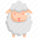 animal, lamb, nature, pet, sheep
