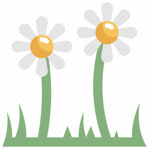 Daisy, day, decoration, easter, flower, holiday, nature icon - Download on Iconfinder