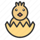 animal, chick, cute, easter, egg icon