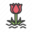easter, flower, nature, plant, spring, tulip icon