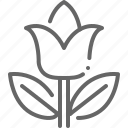 easter, flower, leaf, spring, tulip