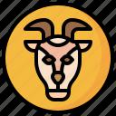 goat, zoo, wild, life, animal, kingdom, mammal