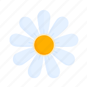 easter, flower, nature, plant, spring icon