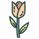 flower, nature, spring, tulip icon