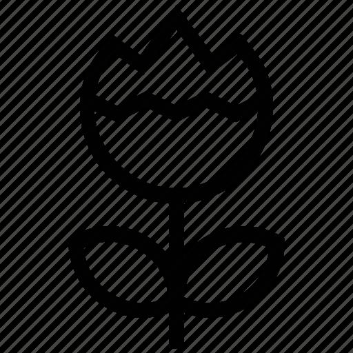 bloom, blooming flower, flower, rose, rose bloom icon