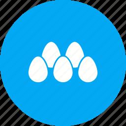 arranged eggs, breakfast, egg, food, hen icon