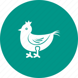 animal, chicken, dinner, food, meat, roast, white meat icon