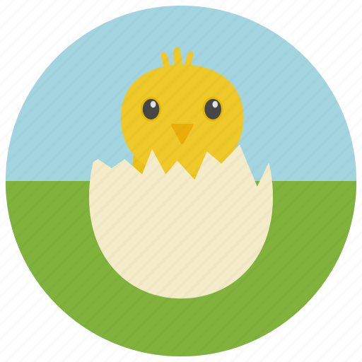 chick, easter, egg icon