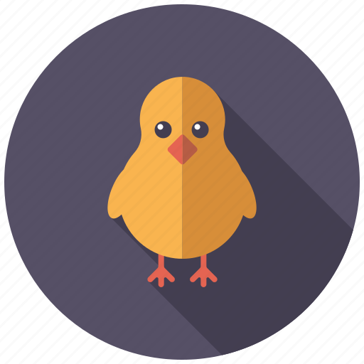 bird, chick, chicken, easter, fluffy, holidays, religion icon