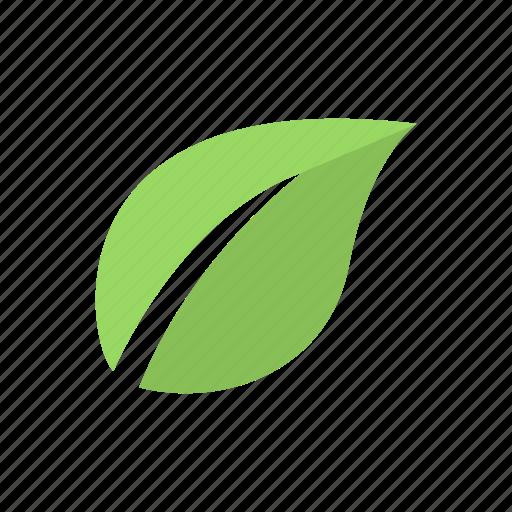 eco, ecological, environmental, foliage, leaf icon icon