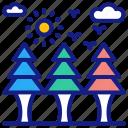 forest, jungle, wood, landscape, nature, rainforest, trees, park, tree, evergreen, pine