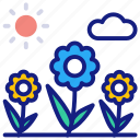 flora, flower, red, rose, valentine, floral, love, nature, bloom, flowerpot, plant, pot