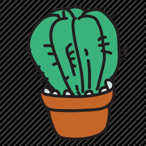 cactus, desert, eco, nature, plant, water icon