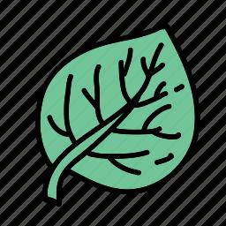 eco, leaf, nature, plant, preserve, save icon