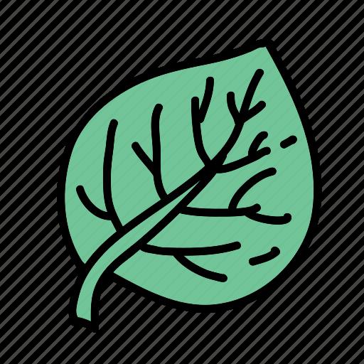 eco, guardar, leaf, nature, plant, preserve, save icon