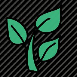 eco, grow, leaf, nature, plant, preserve icon