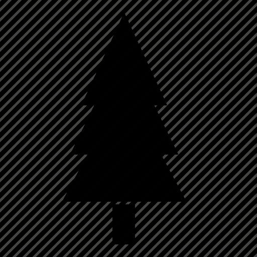 christmas, ecology, farm, nature, pine, plant, tree icon