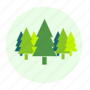 botany, eco, ecology, environment, forest, plant, tree, trees icon