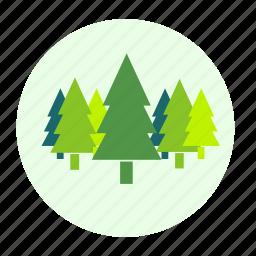 botany, eco, ecology, environment, forest, plant, tree, trees icon
