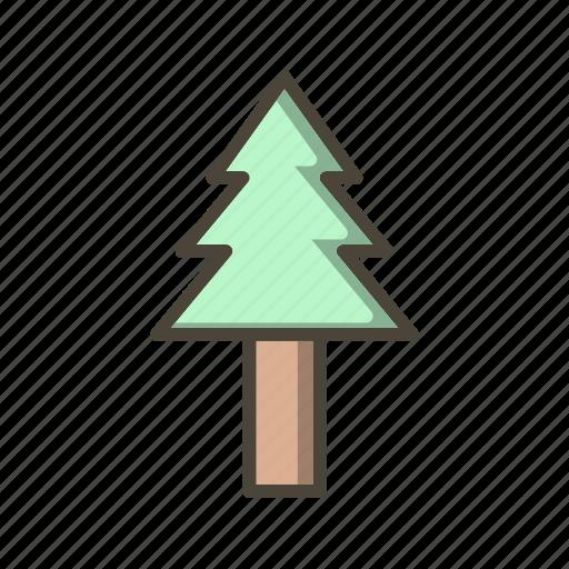 nature, pine tree, plant, tree icon