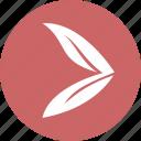 arrow, arrow right, circle, eco, right icon