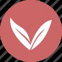 arrow, arrow down, circle, down, eco icon