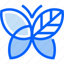 butterfly, animal, insect, nature, ecology, environment, eco