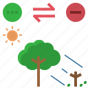 amensalism, shade, sun, tree, wither
