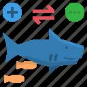 adhere, commensalism, fish, shark, sucker