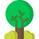 tree, eco, ecology, environment, green, nature, plant