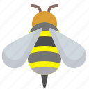 bee, bio, honey, insect icon