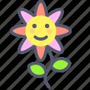 flower, garden, gift, plant, sun