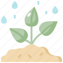 ecology, environment, nature, plant, rain, tree, water icon