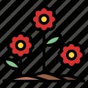 ecology, flower, nature, plant
