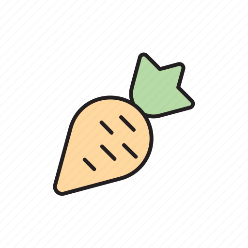 carrot, eco, ecology, farmer, local food, plant, vegetable icon