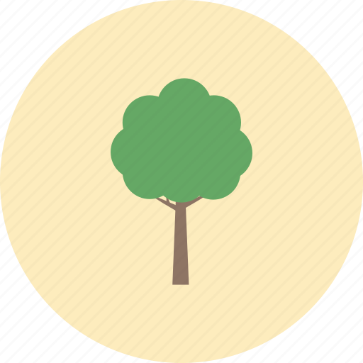 conservative, ecology, environment, leaf, nature, plant, tree icon