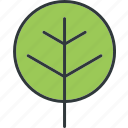 green, leaf, leaves, plant icon