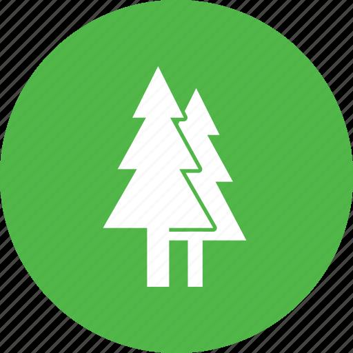 christmas, ecology, environment, garden, nature, pine, tree icon