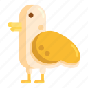 animal, avian, bird, fauna, pigeon icon
