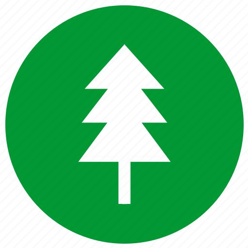 eco, ecology, fir, plant, tree icon