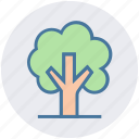 ecology, environment, green, nature, park, plant, tree icon