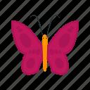butterfly, summer, flower, beauty, colorful, nature, butterflies